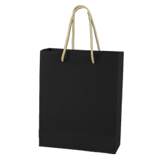 Packson Gift Bag - (PAP055)